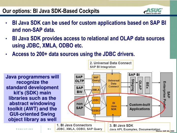 Our options: BI Java SDK-Based Cockpits