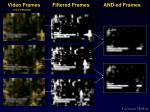 video frames filtered frames and ed frames