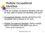 multiple occupational identities