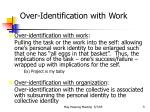 over identification with work1