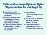 cyfleoedd er mwyn cyfuno r cyfan opportunities for joining it up
