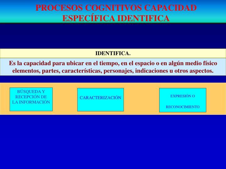 PROCESOS COGNITIVOS CAPACIDAD ESPECÍFICA IDENTIFICA