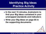 identifying big ideas practice activity70