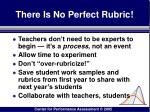 there is no perfect rubric