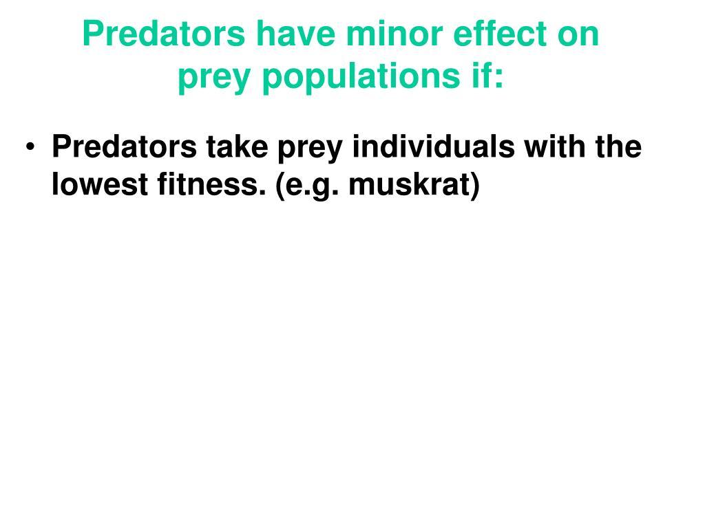 Predators have minor effect on prey populations if: