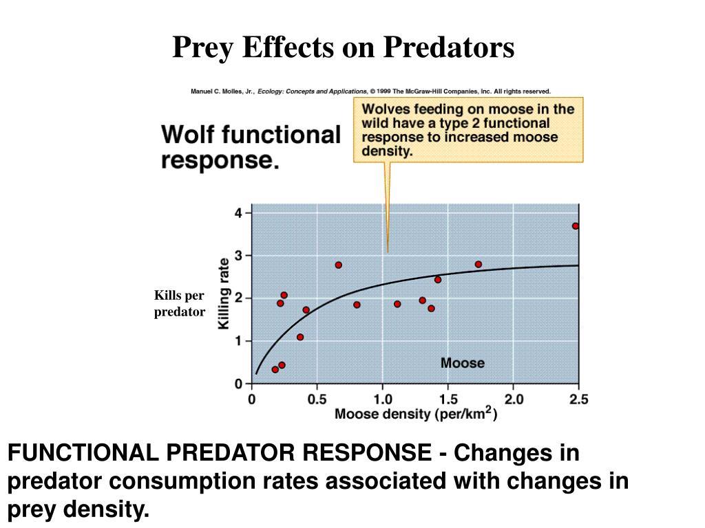 Prey Effects on Predators