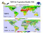 ndvi vegetation health vh