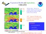 vegetation health and agriculture ukraine