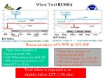 wheat yield russia