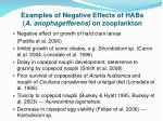 examples of negative effects of habs a anophagefferens on zooplankton