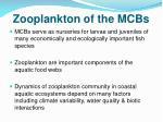zooplankton of the mcbs
