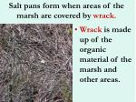 salt pans form when areas of the marsh are covered by wrack