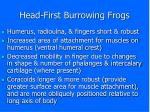 head first burrowing frogs7