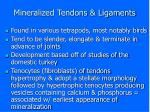 mineralized tendons ligaments
