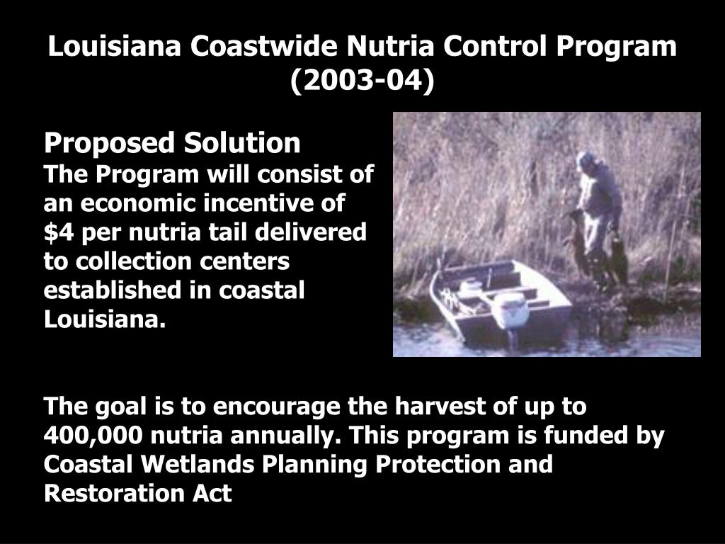 Louisiana Coastwide Nutria Control Program (2003-04)