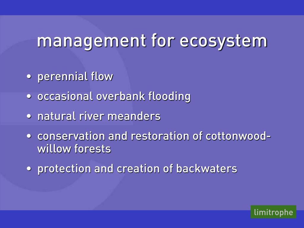 management for ecosystem