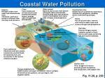 coastal water pollution
