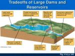 tradeoffs of large dams and reservoirs