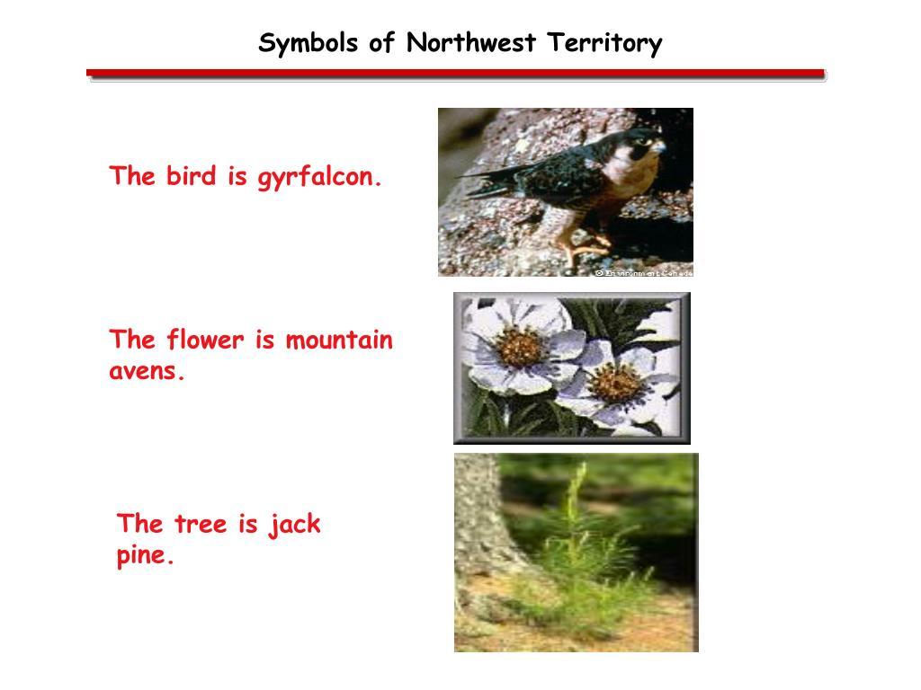 Symbols of Northwest Territory