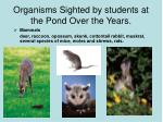 organisms sighted by students at the pond over the years
