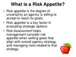what is a risk appetite
