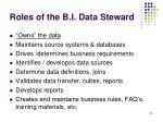 roles of the b i data steward
