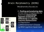 brain morphometry birn