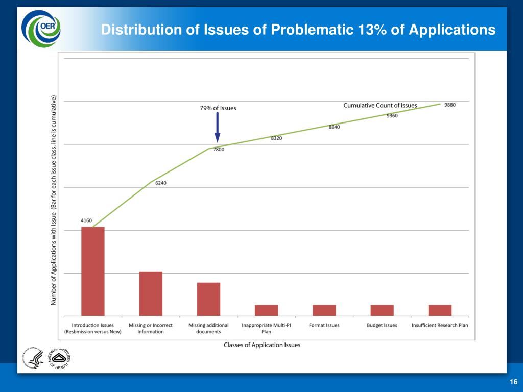 Distribution of Issues of Problematic 13% of Applications