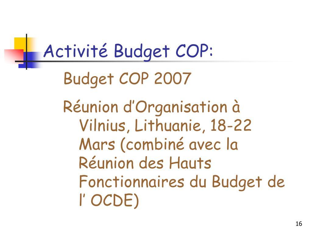 Activité Budget COP: