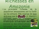 richesses en amazonie