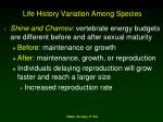 life history variation among species