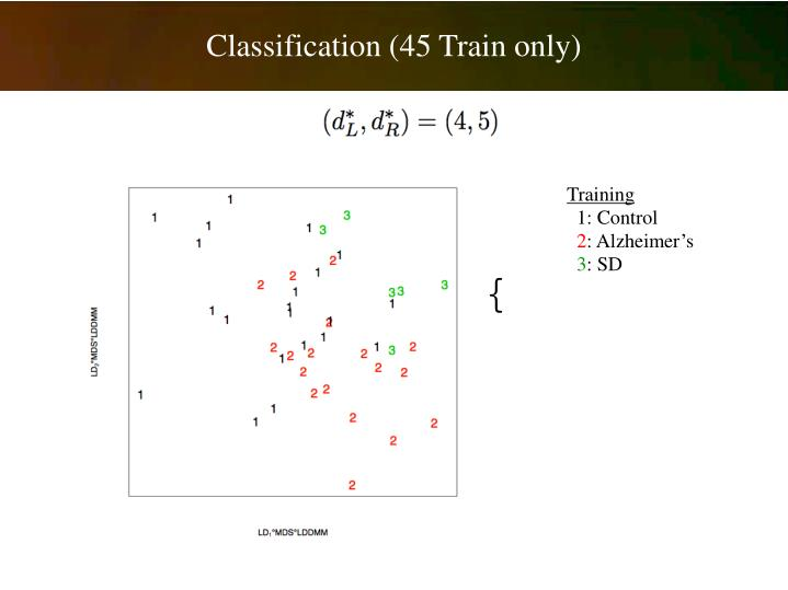 Classification (45 Train only)