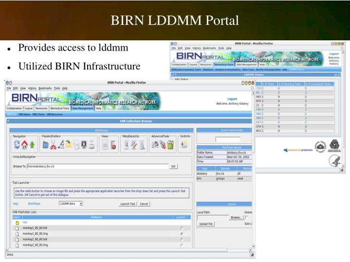 BIRN LDDMM Portal