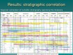 results stratigraphic correlation