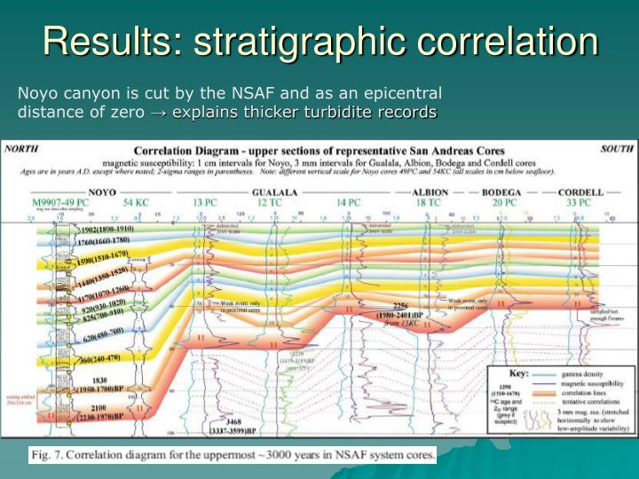 Results: stratigraphic correlation