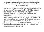 agenda estrat gica para a educa o profissional1