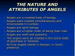 the nature and attributes of angels