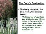 the body s destination