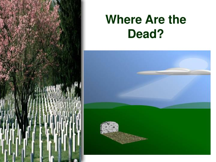 where are the dead n.