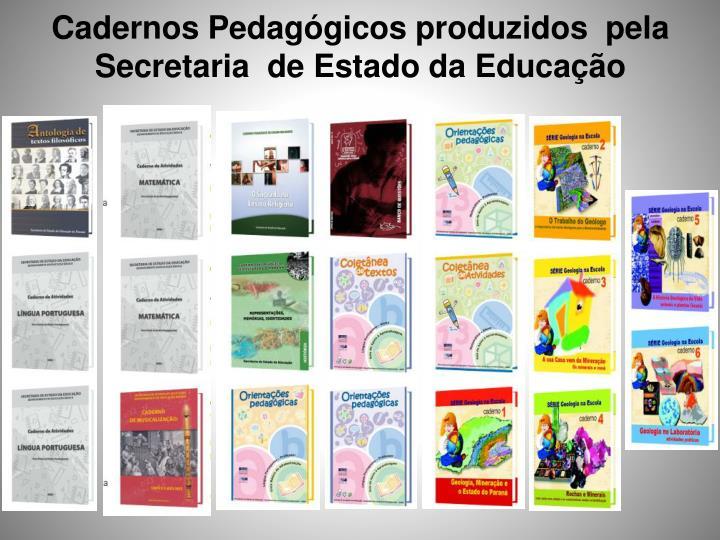 Cadernos Pedagógicos produzidos  pela Secretaria  de Estado da Educação