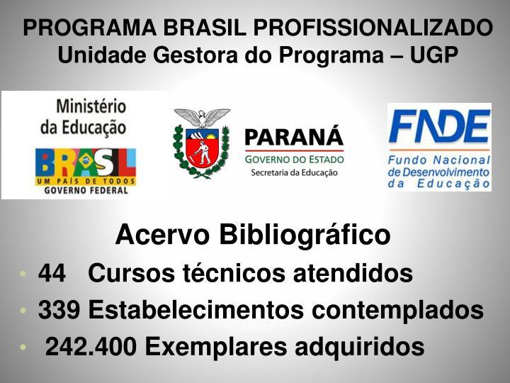 PROGRAMA BRASIL PROFISSIONALIZADO Unidade Gestora do Programa – UGP