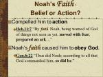 noah s faith belief or action