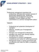 development strategy 2012