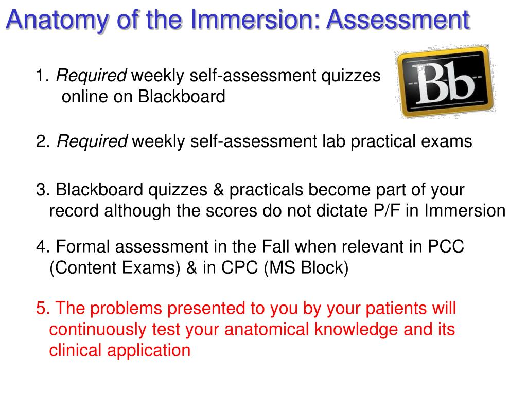 """PPT - Osteopathic Clinical Anatomy Orientation: """"The"""