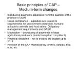 basic principles of cap medium term changes