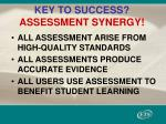 key to success assessment synergy