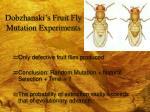 dobzhanski s fruit fly mutation experiments