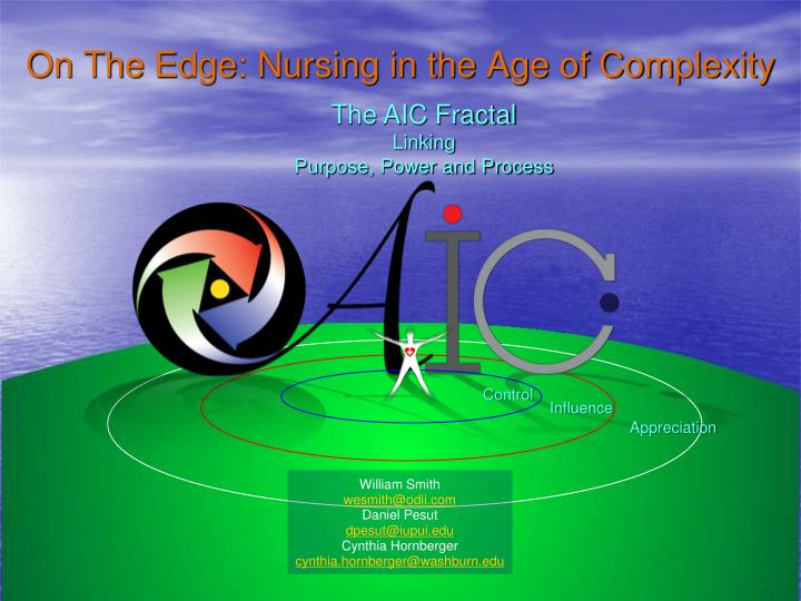 on the edge nursing in the age of complexity n.
