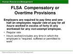 flsa compensatory or overtime provisions