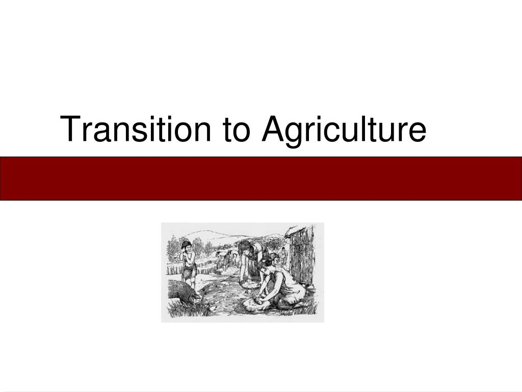transition to agriculture l.